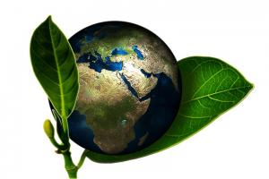 Lofty green bond goals need to be global
